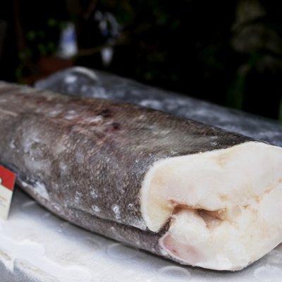 CÁ TUYẾT CHI LÊ - FROZEN CHILEAN SEA BASS (SNOW FISH) - 6-8KG