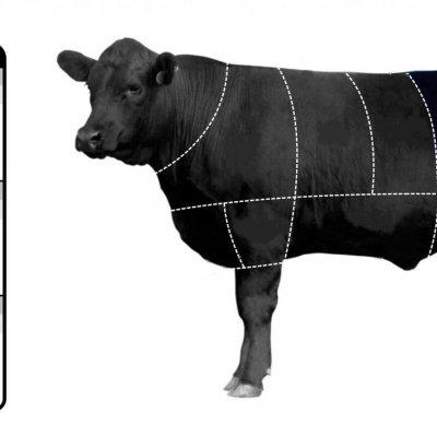 THĂN NGOẠI BÒ MỸ ĐÔNG LẠNH NGUYÊN KHỐI - STRIPLOIN  WHOLE - FROZEN US BEEF