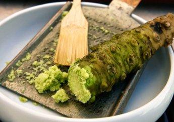Wasabi thật - giả và những điều bạn cần biết