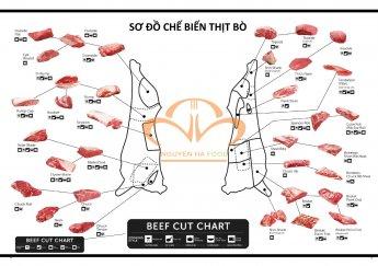 Trọn Bộ Bí Kíp Chế Biến Thịt Bò Theo Từng Bộ Phận Ngon Nhất & Khuyến Mãi Bò Cực Đã Chỉ Có Tại Nguyên Hà Food!