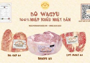 Kiến Thức Bò Wagyu Nhật Từ A Đến Z | Nơi Bán Bò Wagyu Nhật Uy Tín!