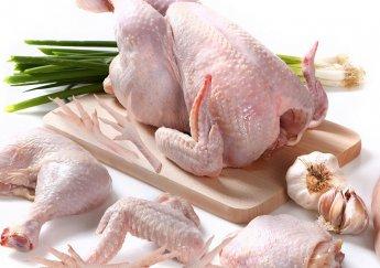 Thịt Gà Và Những Thông Tin Cần Biết Về Thịt Gà!
