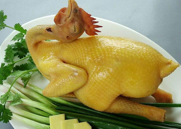 -ga-ta-cp--cp-02-chicken-(chill)-02
