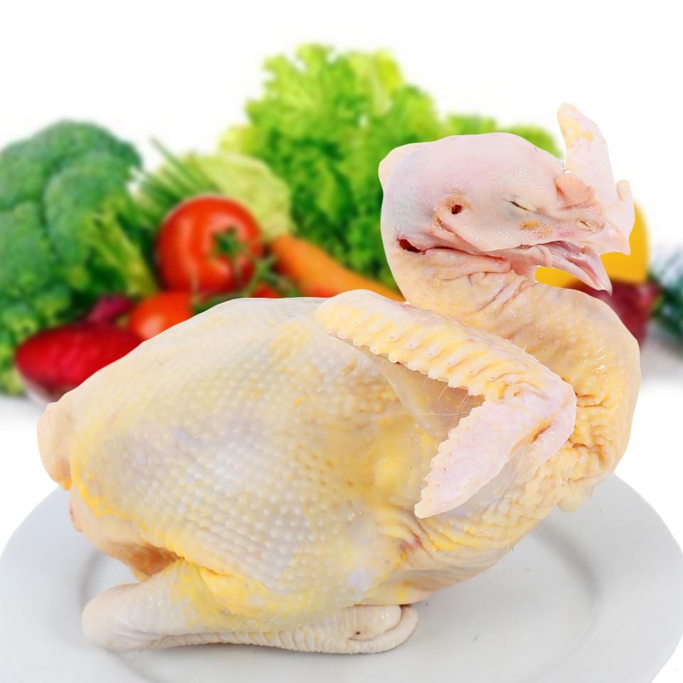 -ga-ta-cp--cp-02-chicken-(chill)-01